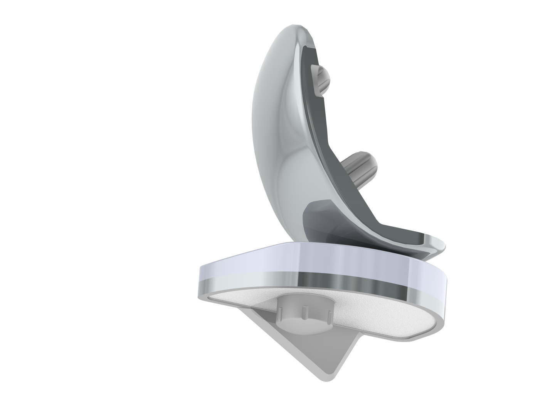 Implant Unicompartimental Fixe (PUC)